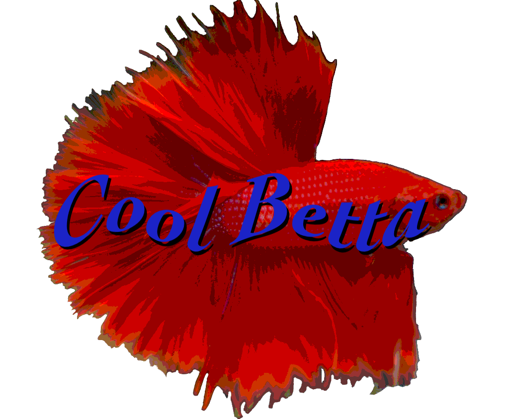 cool betta logo